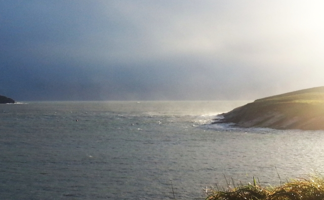 Sandycove Sunday 22nd Dec 2013